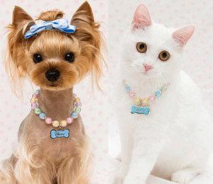 Ювелирные ошейники для животных--www.felixshopping.com