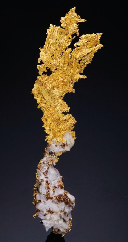 Кристалл золота в кварце. 19х5х1 см. Калифорния, США