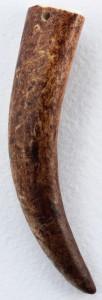 Олений рог - фото nordsteiner.org