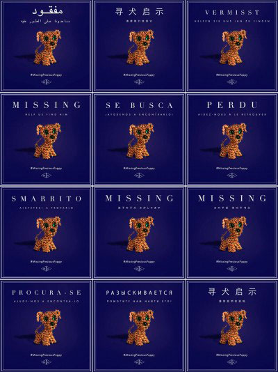 Missing-Precious-Puppy-posters-e1462911013248